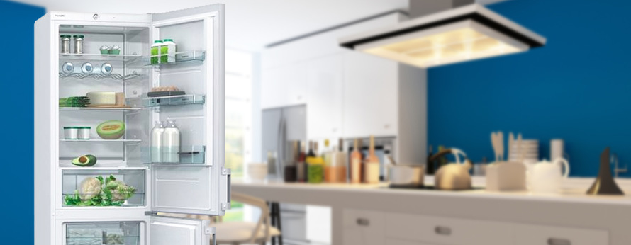 nejlepší ledničky Gorenje Essential RK6192AW